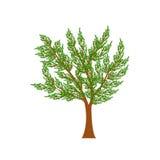 Árvore da mola Imagem de Stock