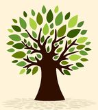 Árvore da mola Fotografia de Stock