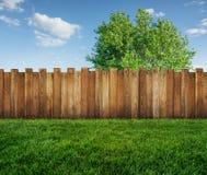 Árvore da mola no quintal e na cerca de madeira fotografia de stock royalty free