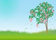 Árvore da mola. Vetor Fotografia de Stock
