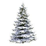 Árvore da neve do White Christmas Fotos de Stock