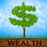 A árvore da riqueza mostra dólares e o ramo americanos Fotografia de Stock