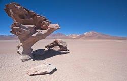 Árvore da rocha do deserto Fotos de Stock Royalty Free