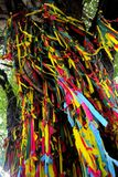 Árvore da tela Fotografia de Stock