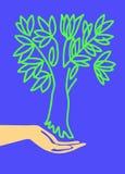 Árvore da terra arrendada da mão Fotos de Stock