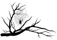 Árvore da Web de aranha ilustração royalty free