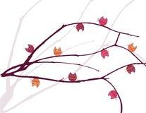 Árvore das corujas ilustração do vetor