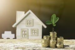 A árvore das moedas e o fundo da casa e do carro mostram economias imagem de stock