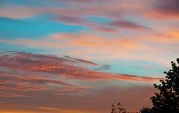 Árvore das nuvens do rosa do céu do por do sol foto de stock