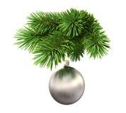 Árvore de abeto com uma esfera do Natal Fotografia de Stock Royalty Free