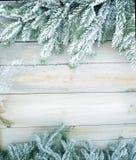 Árvore de abeto do Natal Imagem de Stock