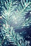 Árvore de abeto do Natal com neve de queda - fundo do inverno cartão Fotos de Stock
