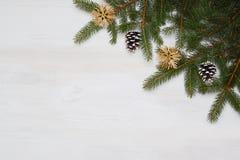 Árvore de abeto do Natal em um fundo de madeira Imagens de Stock Royalty Free