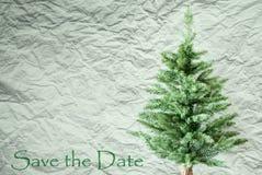 Árvore de abeto, fundo de papel amarrotado, economias do texto a data imagem de stock