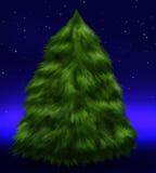 Árvore de abeto macia sob estrelas Fotografia de Stock