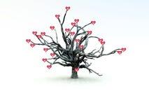 Árvore de amor Fotografia de Stock