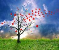 Árvore de amor com folhas do coração Screensaver ideal Fotos de Stock