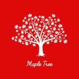 Árvore de bordo branca Imagem de Stock