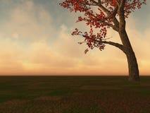 Árvore de bordo da queda no horizonte Imagens de Stock