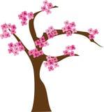 Árvore de cereja ilustração do vetor