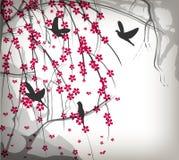 Árvore de cereja romântica com pássaros Fotos de Stock Royalty Free