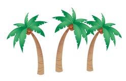 Árvore de coco ilustração royalty free