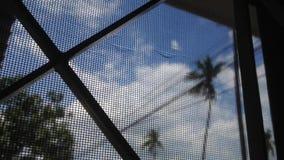 Árvore de coco com timelapse do céu e da nuvem, foco seletivo na tela da janela vídeos de arquivo