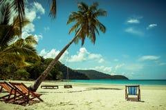 Árvore de coco e cama de madeira da praia na areia branca com o mar azul bonito foto de stock