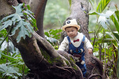 Árvore de escalada do menino fotografia de stock