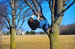 Árvore de escalada do menino novo Foto de Stock Royalty Free