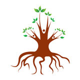 Árvore de família Imagens de Stock Royalty Free
