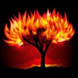 Árvore de Fireing na noite Ilustração Royalty Free