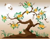 Árvore de florescência com colibris ilustração royalty free
