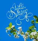 A árvore de florescência da mola no fim do jardim acima e o texto olá! saltam Rotulação da caligrafia Fotos de Stock Royalty Free