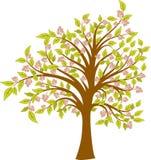 Árvore de florescência da mola, vetor Fotografia de Stock Royalty Free