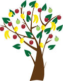 Árvore de fruta Fotos de Stock