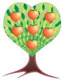 Árvore de frutas sob a forma do coração. Imagens de Stock Royalty Free