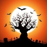 Árvore de Halloween Fotos de Stock