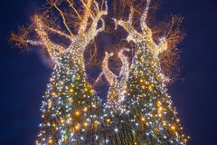 Árvore de iluminação decorada fotos de stock