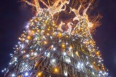 Árvore de iluminação decorada fotografia de stock royalty free
