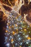 Árvore de iluminação decorada imagem de stock