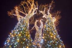 Árvore de iluminação decorada imagens de stock royalty free