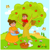 Árvore de maçã dos desenhos animados Foto de Stock Royalty Free