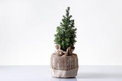 Árvore de Mini Christmas Fotografia de Stock Royalty Free