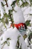 Árvore de Natal 1 Imagens de Stock Royalty Free