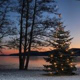 Árvore de Natal ao ar livre Foto de Stock Royalty Free