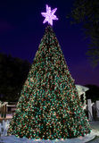 Árvore de Natal ao ar livre de salão de cidade imagens de stock royalty free