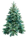 Árvore de Natal azul com trajeto de grampeamento Fotografia de Stock