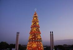Árvore de Natal bonita em Lisboa (no por do sol) Imagens de Stock Royalty Free