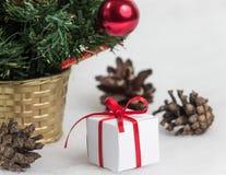 Árvore de Natal bonita no fundo branco Imagens de Stock Royalty Free